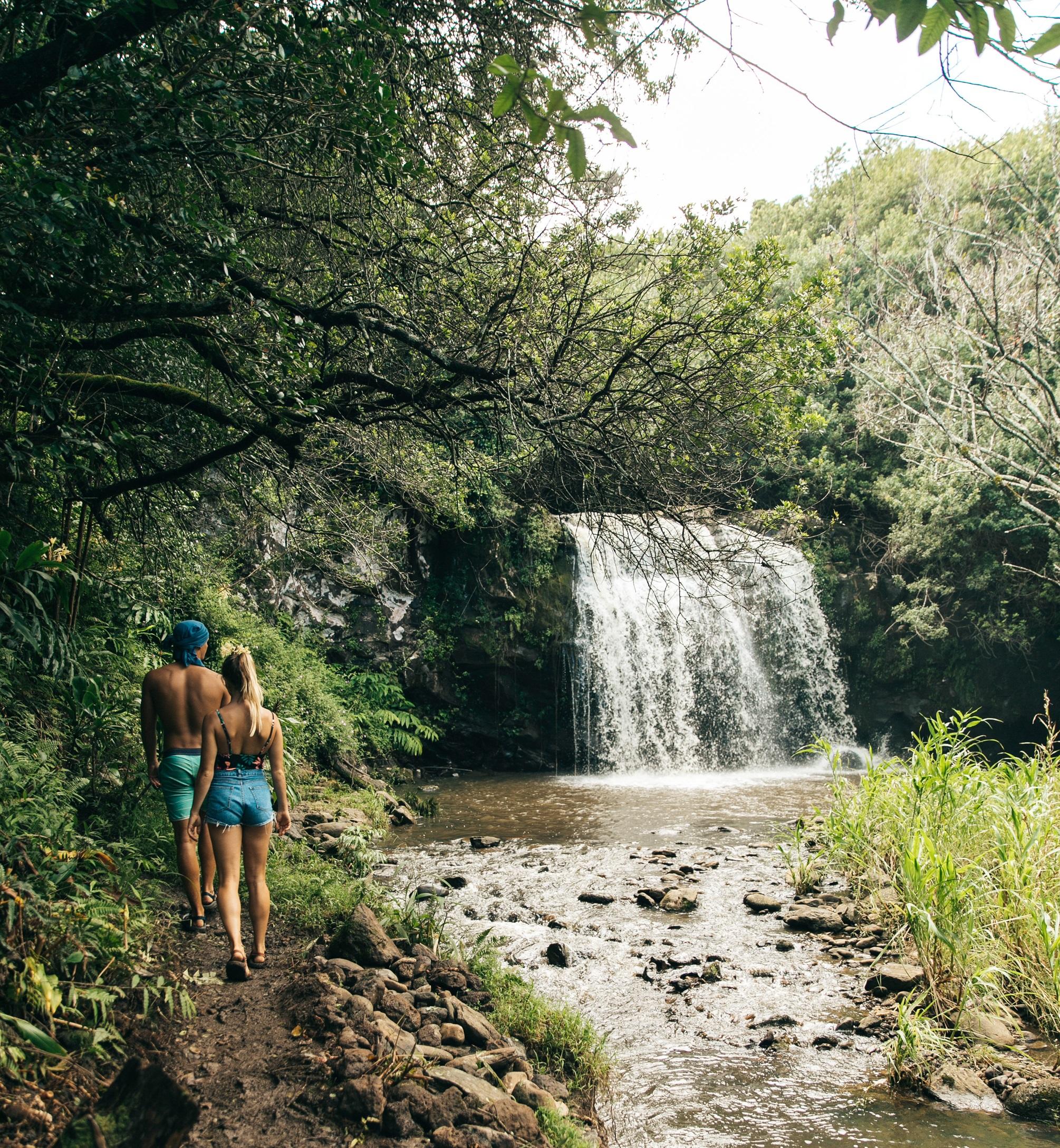 HAWAII FOREST & TRAIL, ISLAND OF HAWAII/OAHU