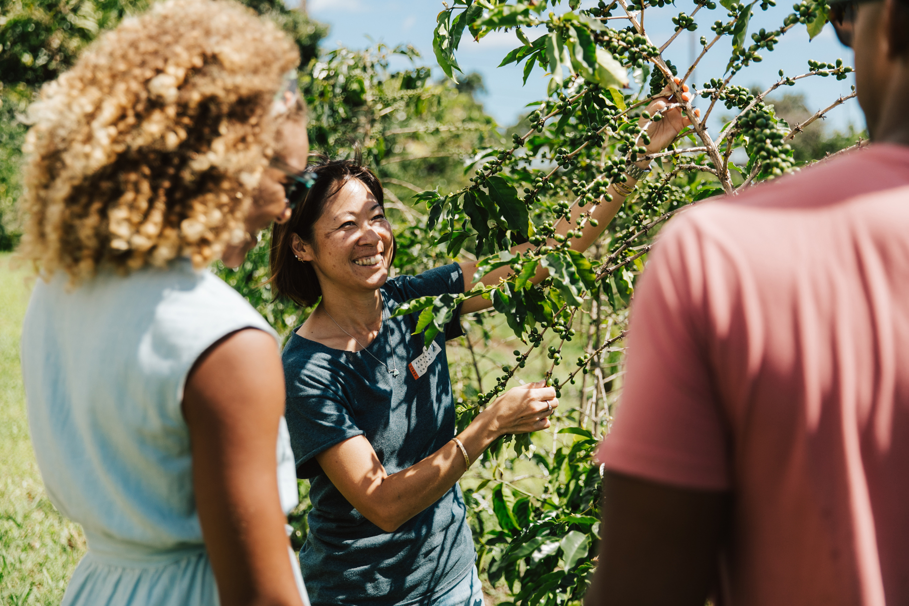 Host explains coffee growing to visitors