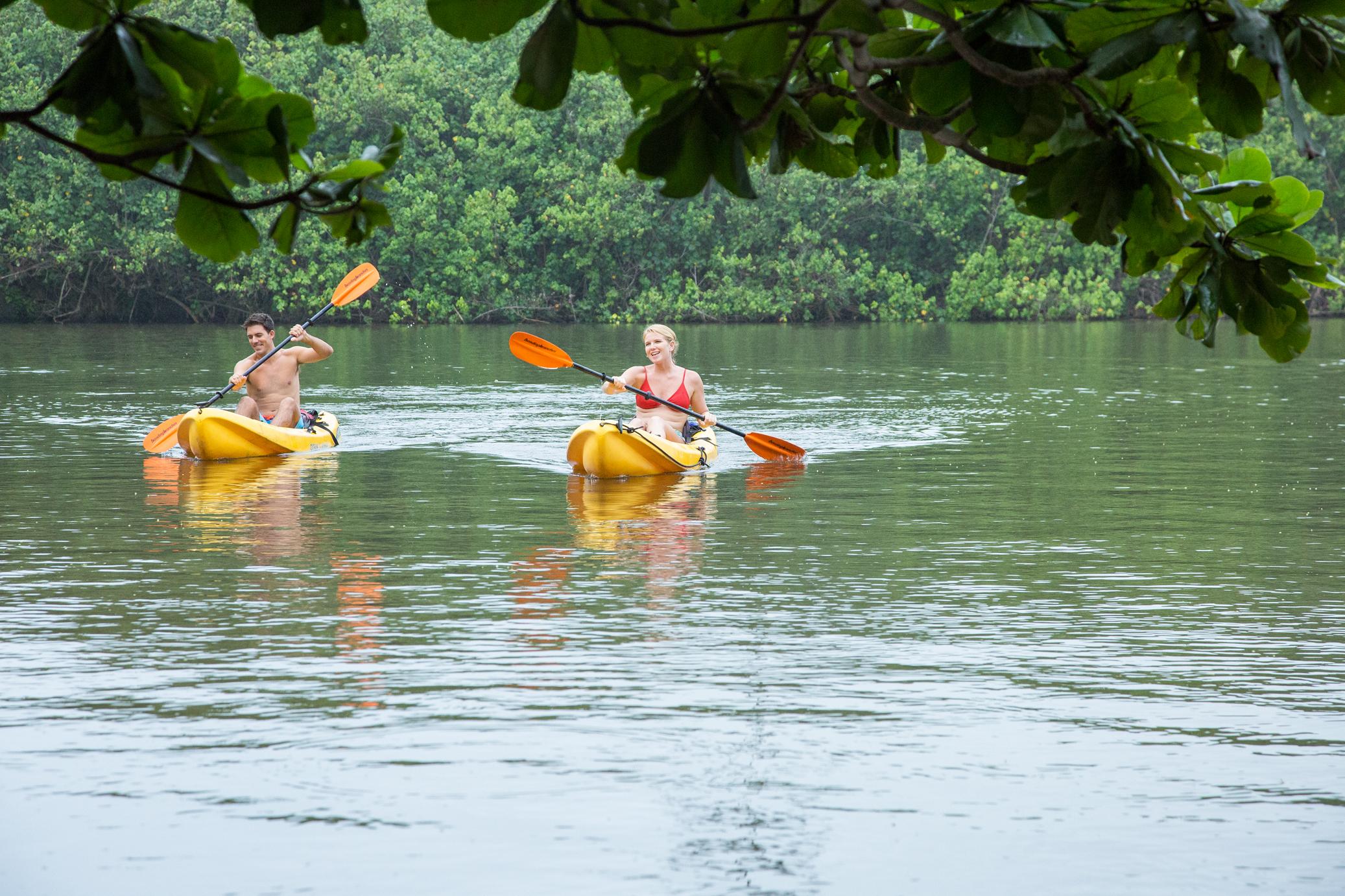 Peaceful River Kayaking Excursion
