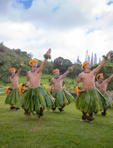 Hula Dancing | Hawaiian Hula | Go Hawaii