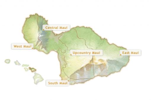 East Maui Taro Festival (24th Annual)