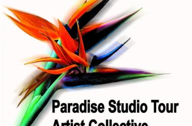 Contemporary Perspectives from the Paradise Studio Tour Artist Collective