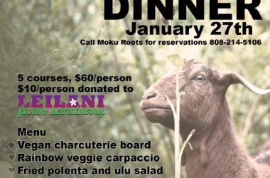 Vegan for the Animals Dinner