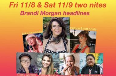 Come see the funniest ladies in HI on Kauai Veteran's Day weekend 11/8-9 at Trees!
