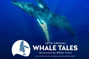 Whale Tales 2020 (14th Annual)