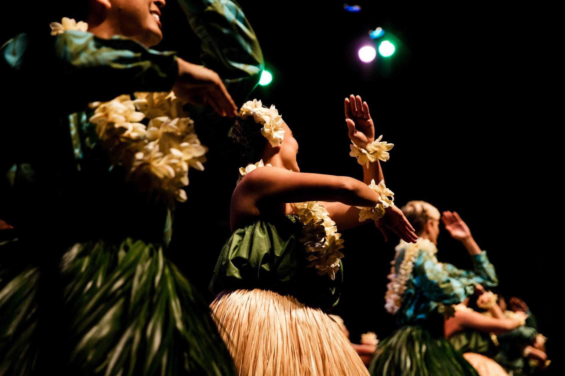 Hula Dancing Hawaiian Hula Go Hawaii