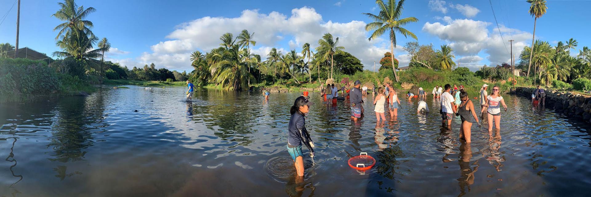 Volunteers in water