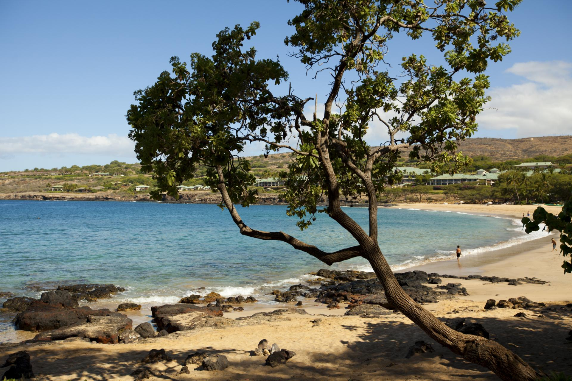 Scenic beach on the Hawaiian island of Lanai