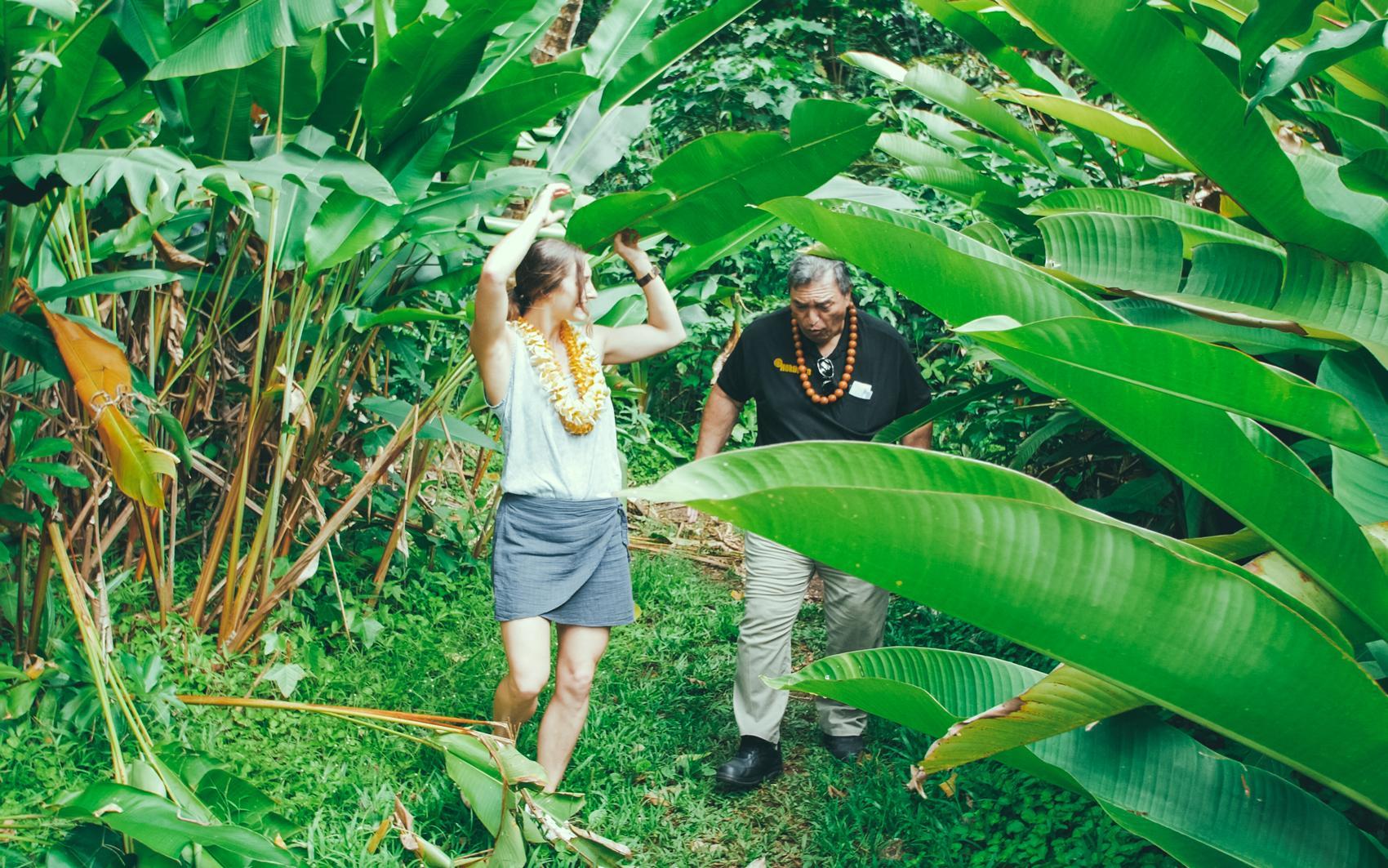 5 ways to experience aloha