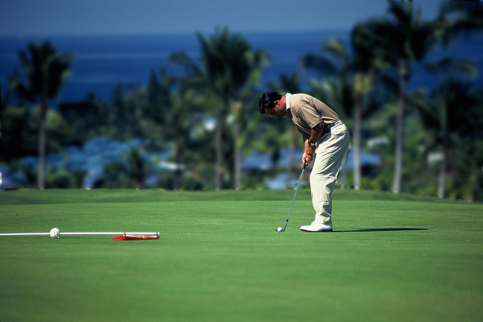 Explaining the Pitch Shot in Golf