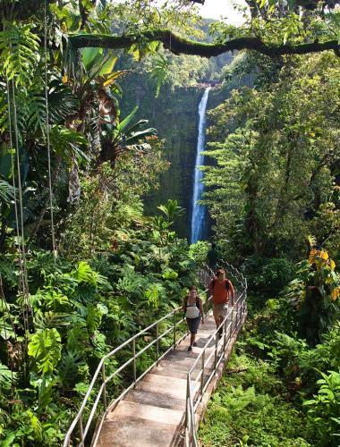 Akaka Falls State Park, Hilo, Island of Hawaii