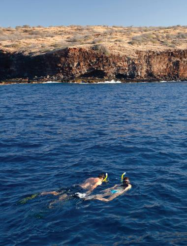 Couple snorkeling on their honeymoon on Lanai