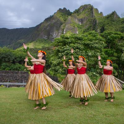 a history and culture of hawaii Cultur divers ethnic minor psychol 2009 oct15(4):374-87 doi: 101037/ a0016774 native hawaiians and psychology: the cultural and historical context of indigenous ways of knowing mccubbin ld(1), marsella a author information: (1)educational leadership and counseling psychology, washington state university,.