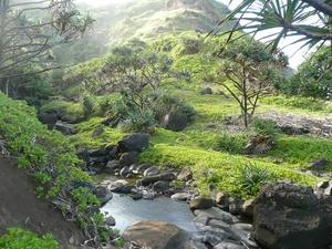 Hike to the waterfall and to the ocean