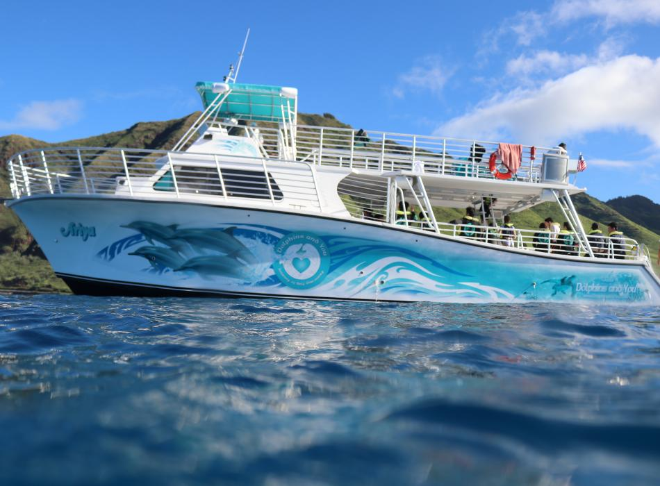 Dolphins and You has an all-new tour boat!