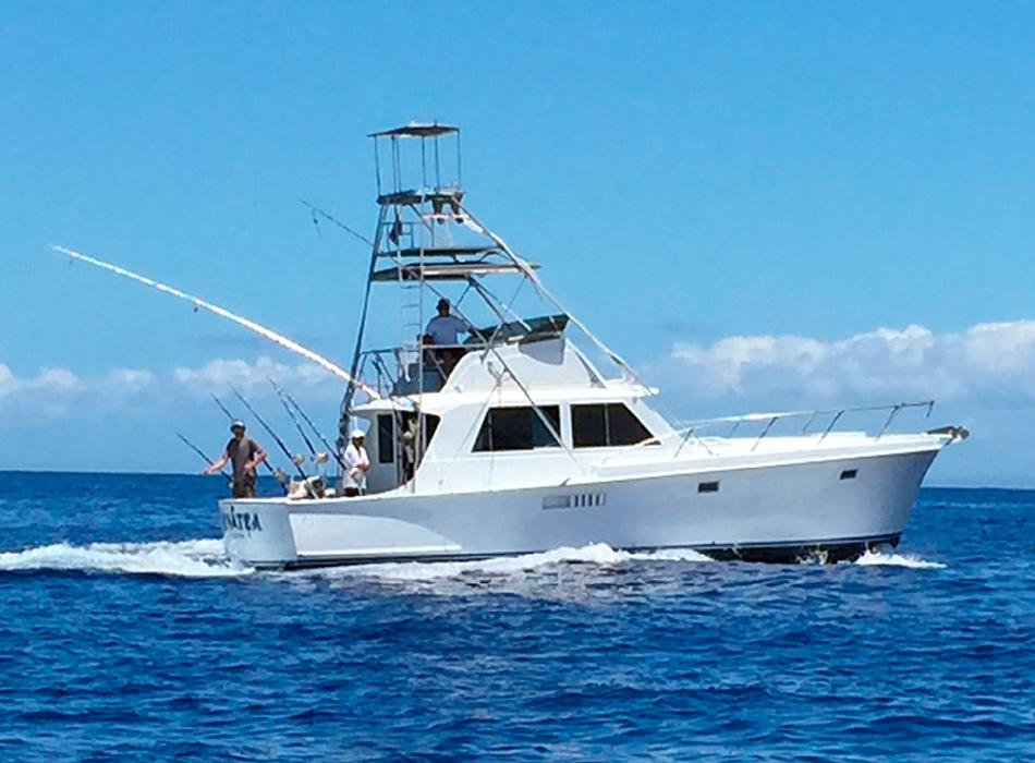 Wide selection of sport fishing boats