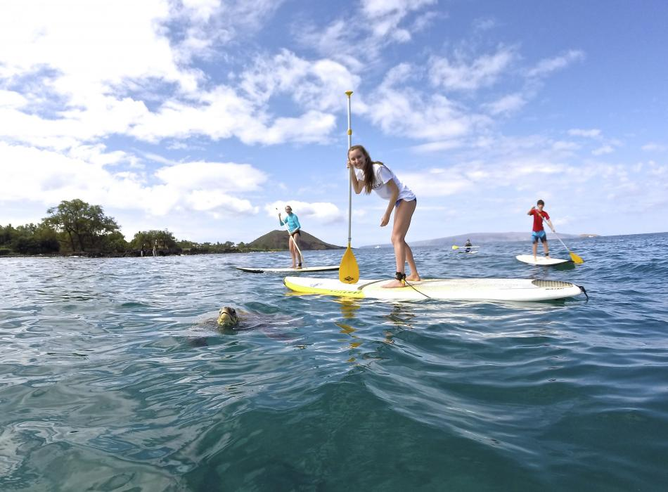 Hawaiian Paddle Sports Stand Up Paddle Boarding