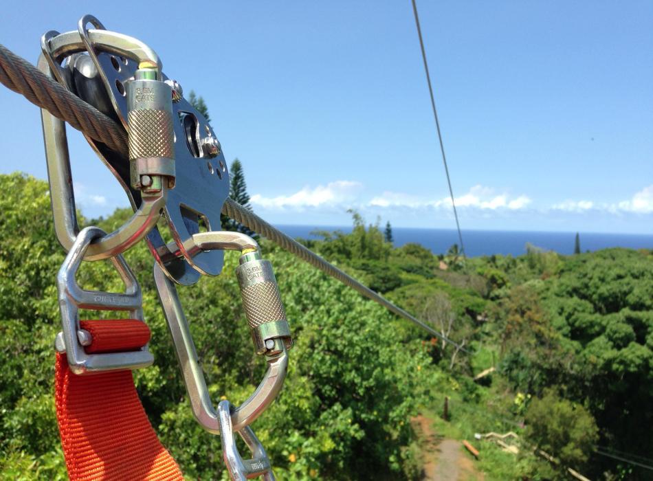 Your Maui Eco Adventure.