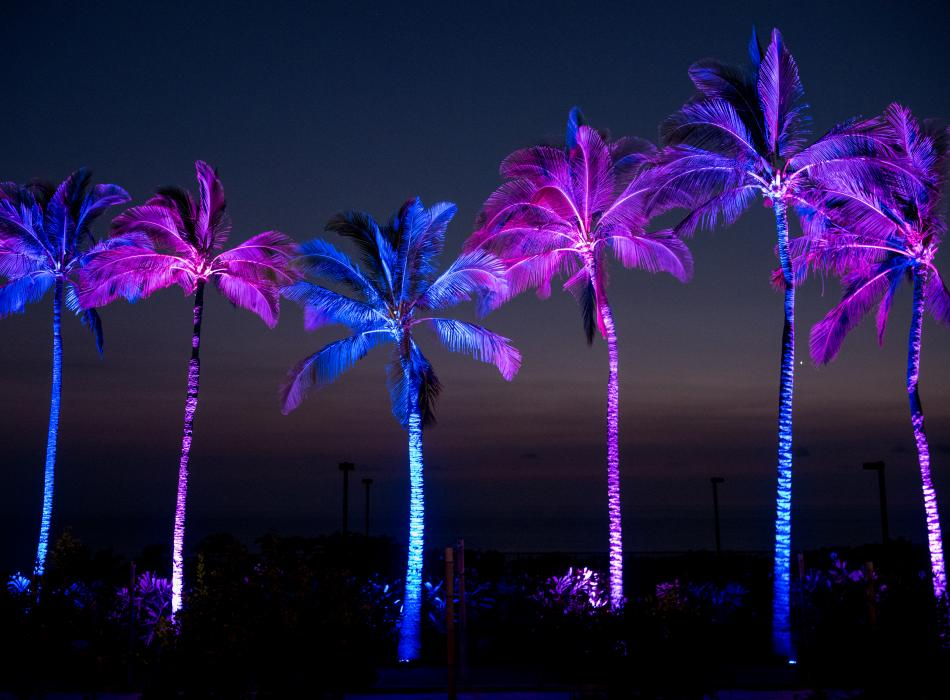 Gold Concert Palm Trees