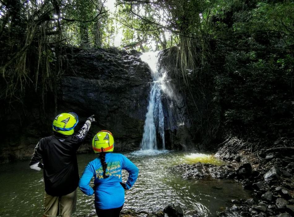 Waterfall Picnic Tour