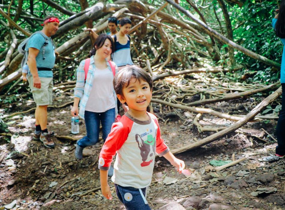 The Manoa Falls Trail is suitable for all ages