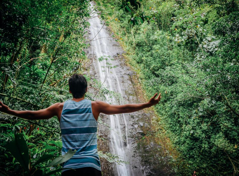Marveling at the majesty of Manoa Falls