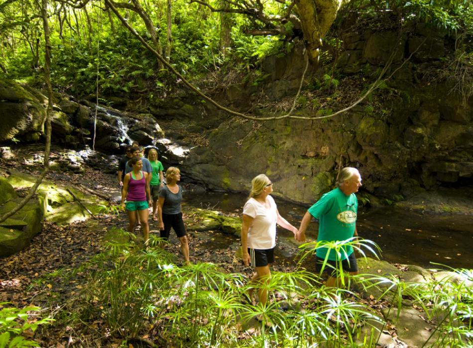 Kauai Jungle Hike - Kayak jungle streams, hike to waterfalls with Outfitters Kauai