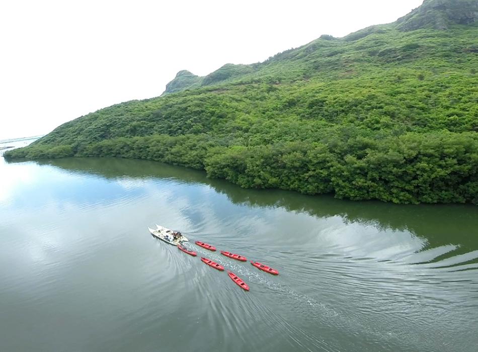 Outfitters Kauai Kayak Trip - Paddle downwind, return by motorized canoe with Outfitters Kauai