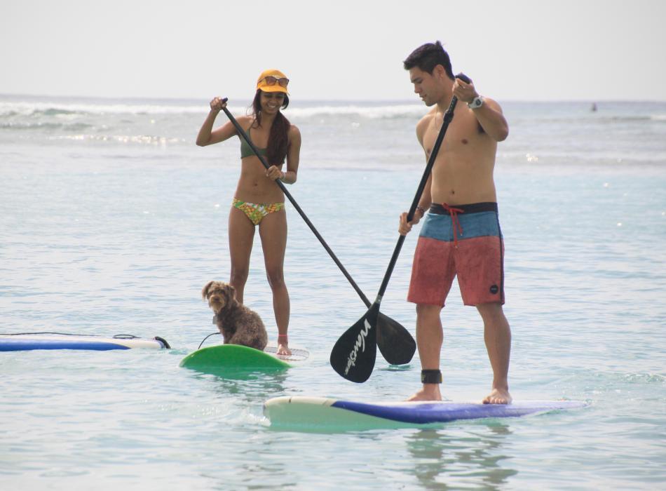 Paddleboarding at Ala Moana Beach Park