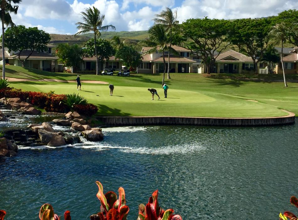 Golf, anyone? we have great courses on all islands.