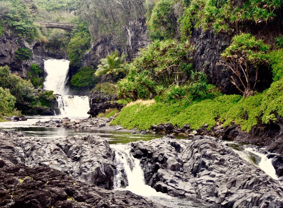 Take the Road to Hana to see the pools of O'heo