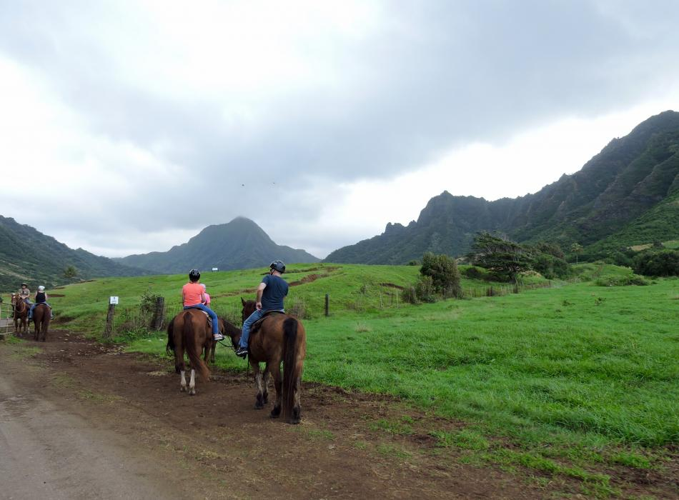 Get a feel for the countryside at Kualoa Ranch