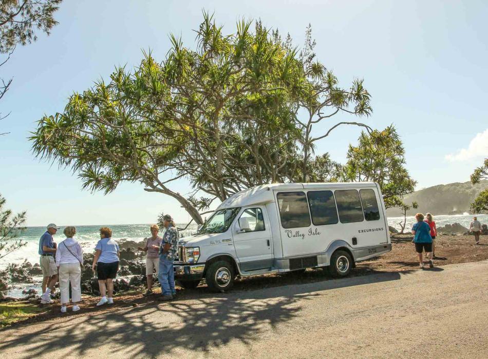 Road to Hana Tour Guests & Van