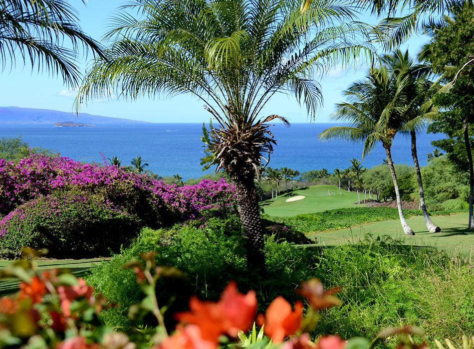 Wailea Emerald Course-1