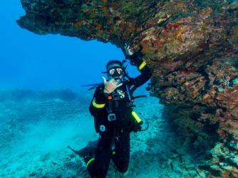 Aloha Scuba Diving Company