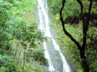Guided Waterfall hikes