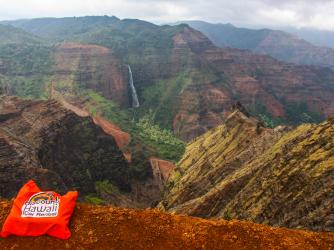 On the Way - Waimea Canyon Lookout - Kauai