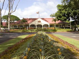Hawaii's Complete Pineapple Experience
