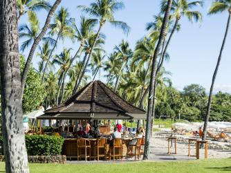 Hau Tree at Mauna Kea Beach Hotel