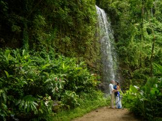 Private Waterfall in Lush Jungle Setting;weddings-kauai.com