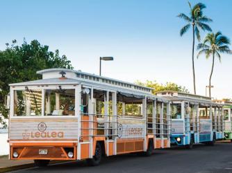 LeaLea Trolley