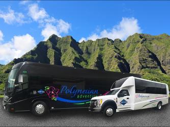 Motor Coach and Mini Bus