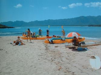 The Beach you land at on Moku Nui Island