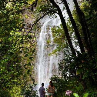 Waterfall off the Hana Highway in East Maui