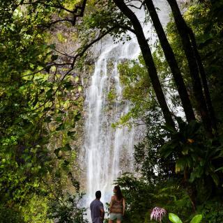 Waterfall off the Hana Highway in East Maui