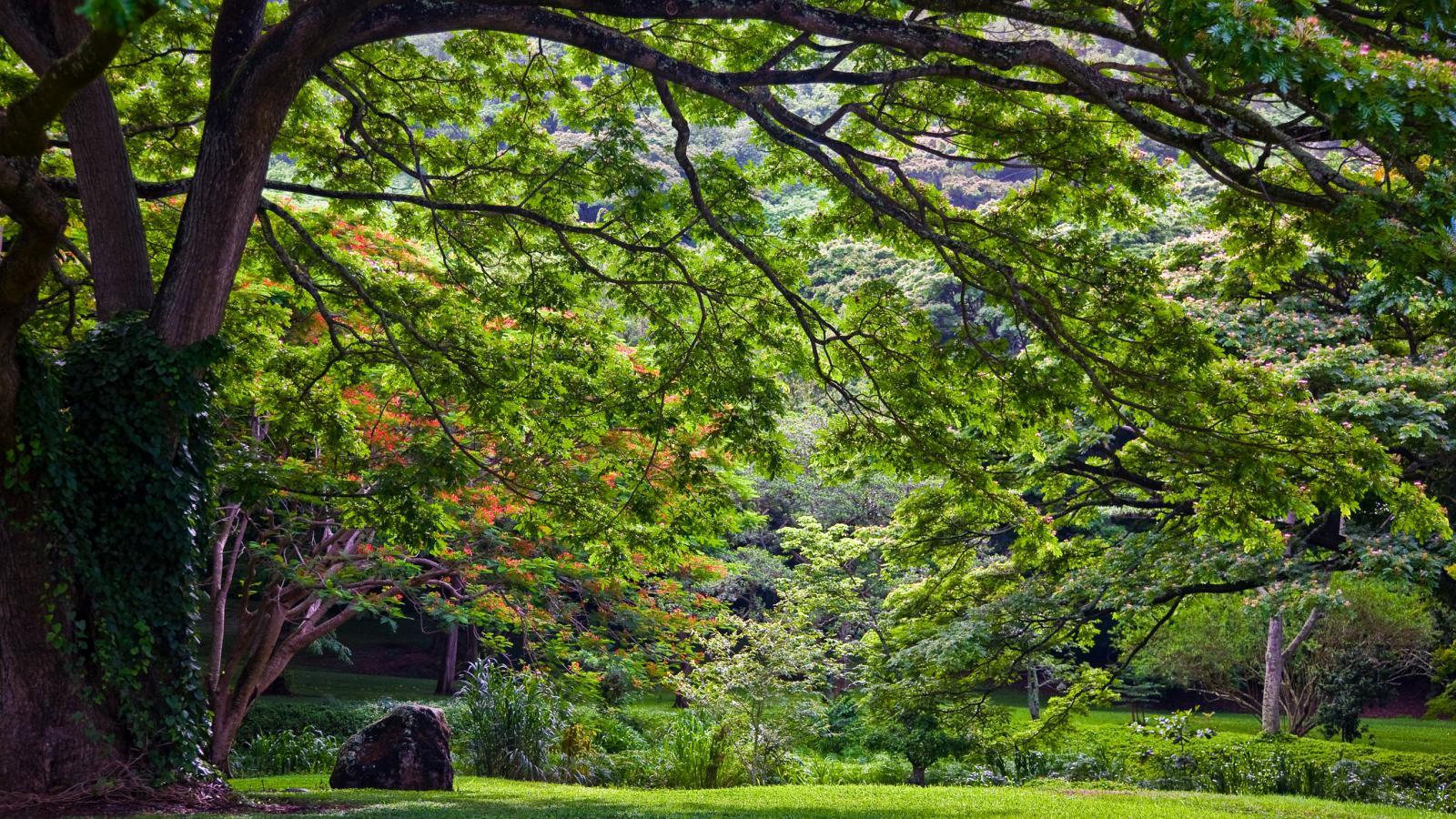 Kauai Parks Gardens Go Hawaii