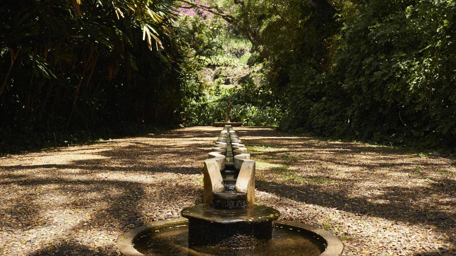 Allerton Garden Kauai | Go Hawaii