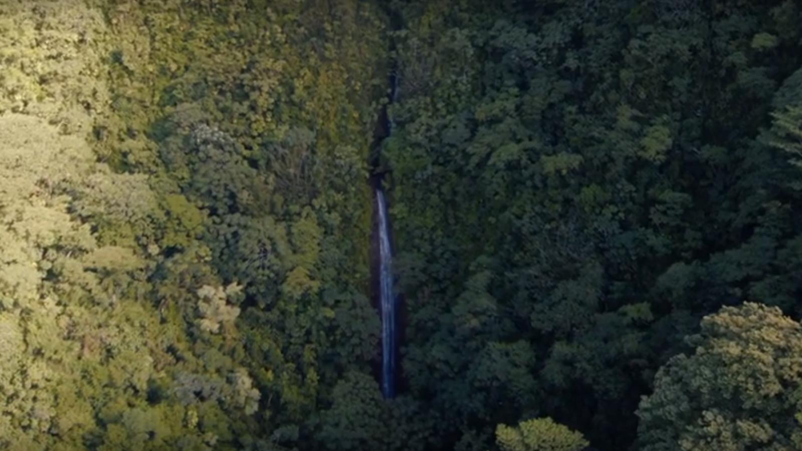Safety Tips for Hawaiian Travelers   Go Hawaii